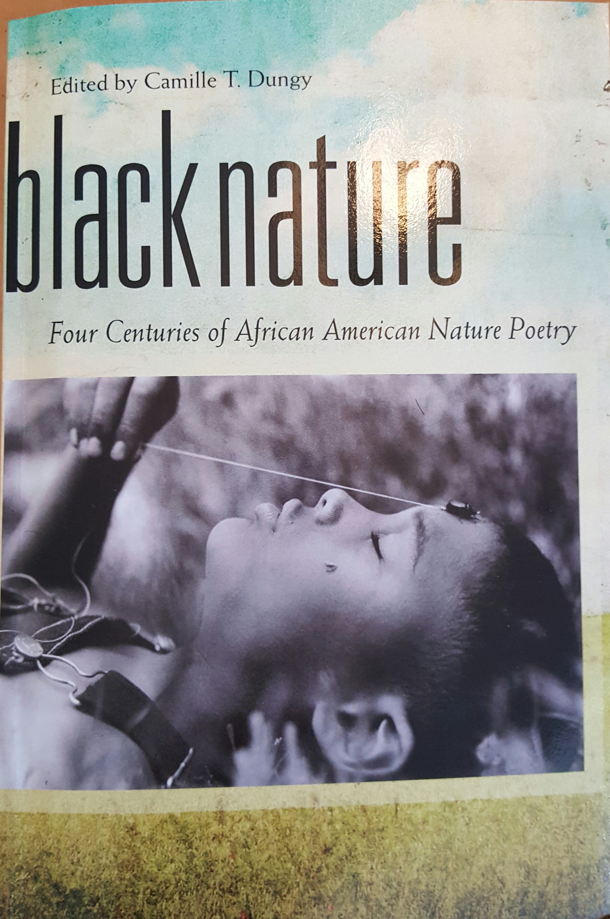 an introduction to the history of african american poetry by gwendolyn brooks